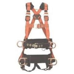 Rental store for SAFETY HARNESS   LANYARD in Guntersville AL